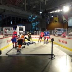 NHL 16 Honda Rink