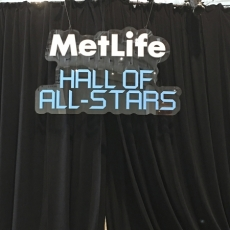 NHL 16 MetLife Sign