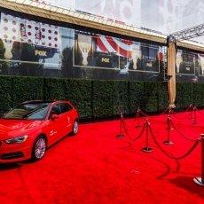 Fox Emmy's 2015