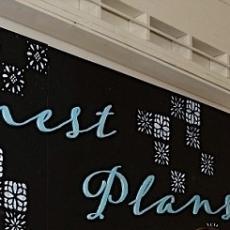 Honest Plans Target