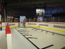 NHL 16 Bridgestone Vinyl