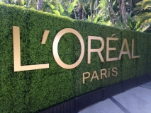 L'Oreal Hedge Dimensional