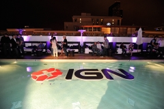 IGN Pool Float