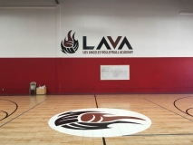 LAVA Volleyball