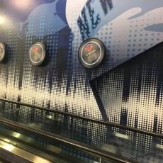 Vinyl Indoor MLB Graphic