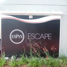 The Espys Escape Party