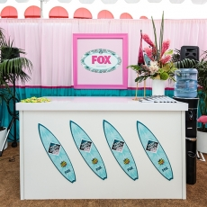 Fox Teen Choice