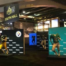 NFL Experience 2016: RexFrame Close Up